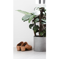 Concrete Pot - Large Natural