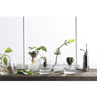 Botanical Vase - Large Black